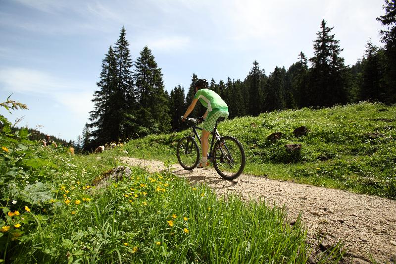 ammergauer-alpen-gmbh_mountainbiken_laber-2